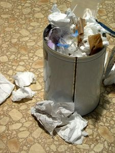 article-new_ehow_images_a02_6d_ck_clean-kitchen-trash-can-800×800 ...