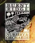 burnt-ridge-seed-catalogs