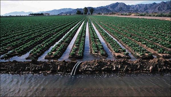 irrigation2_big