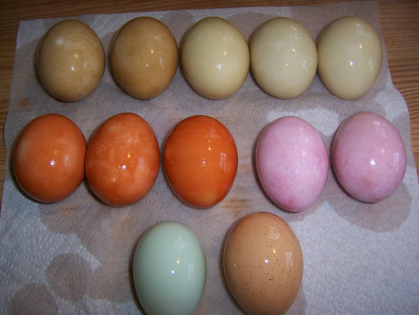 Naturally Dyed Easter Eggs | wildramp